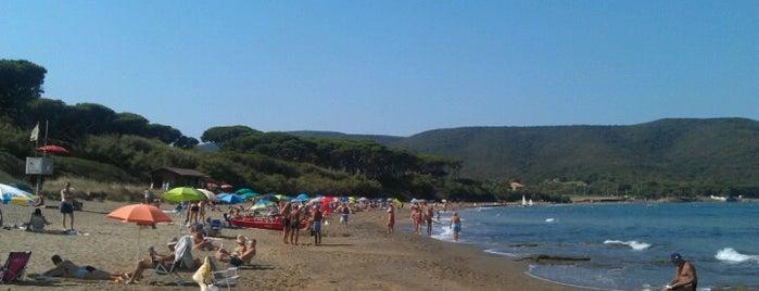 Spiaggia di Baratti is one of Tuscany.