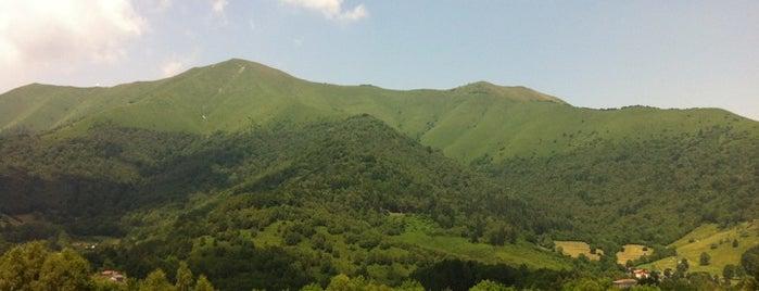 Tivania is one of Locais curtidos por Chiarenji.
