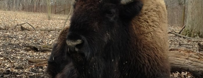 Buffalo Rock State Park is one of สถานที่ที่บันทึกไว้ของ Ed.