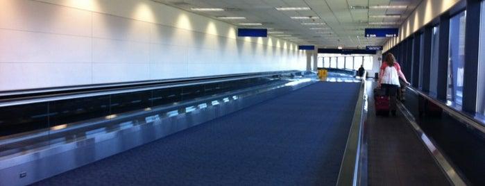 Flughafen Dallas Fort Worth (DFW) is one of สนามบินนานาชาติ (1).