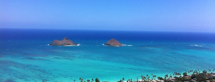 Local's Guide to Hawaii