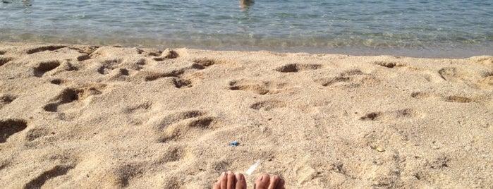 Playa Sant Andreu de Llavaneres is one of Rosa Maria 님이 좋아한 장소.