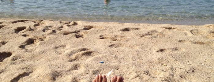 Playa Sant Andreu de Llavaneres is one of Tempat yang Disukai Barbara.
