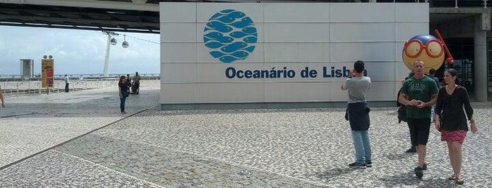 Oceanário de Lisboa is one of Lugares que fui.