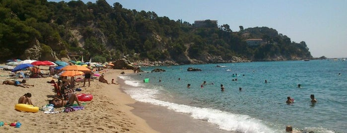 Platja de Llorell is one of Playas de España: Cataluña.