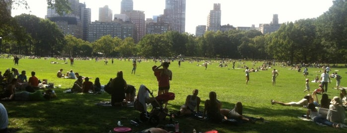 Sheep Meadow is one of NYC I see.