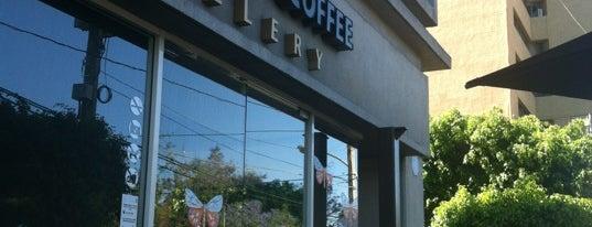 Black Coffee Gallery by Ismael Vargas is one of Guadalajara.