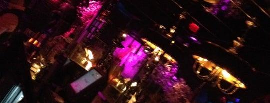 Mokai Lounge is one of Best Miami Nightclubs.