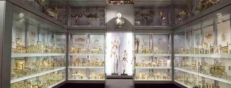 Hunterian Museum is one of Tired of London, Tired of Life (Jan-Jun).