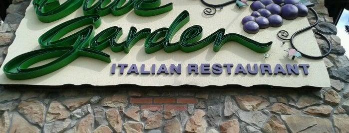 Olive Garden is one of Gluten-free food.
