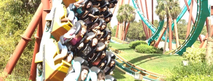 Kumba is one of My favorites for Theme Parks and Rides.