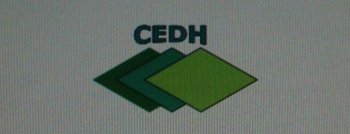CEDH Centro De Estudos em Diabetes e Hipertensão is one of Centros Pesquisa Clinica.