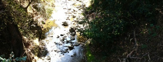 Stevens Creek Trail, Sleeper Trailhead is one of SV hot spots.