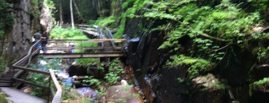 Flume Gorge is one of NH.