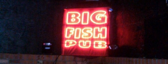 Big Fish Pub is one of Arizona's Music Venues.