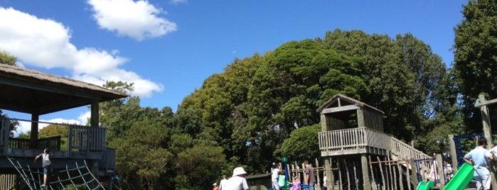Okahu Bay Playground is one of Lugares favoritos de Kelly.