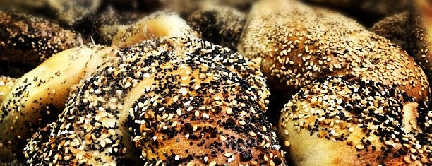 NYC's Finest Bagels, Mapped