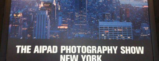 AIPAD Photograhy Show is one of New York, my dear New York.