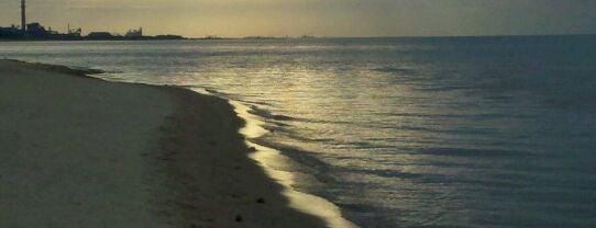 Porter Beach is one of Lieux qui ont plu à Vivek.