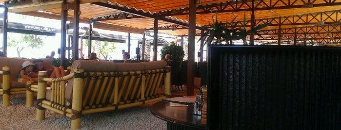 mg-cafe is one of Posti che sono piaciuti a eSeDeSirena.