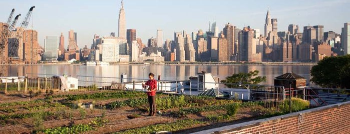 Eagle Street Rooftop Farms is one of BKLYN: Whole New World.