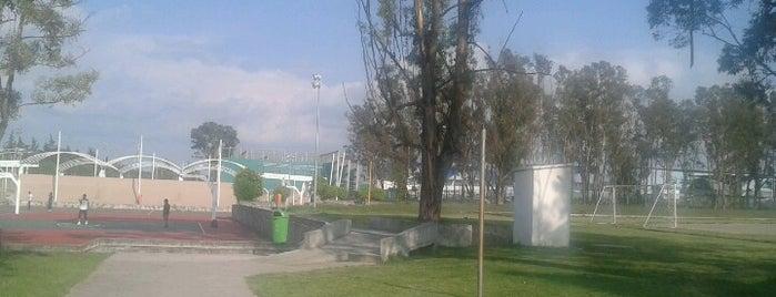 Complejo Deportivo Universitario y de Alto Rendimiento is one of Lugares favoritos de Luisa Fernanda.