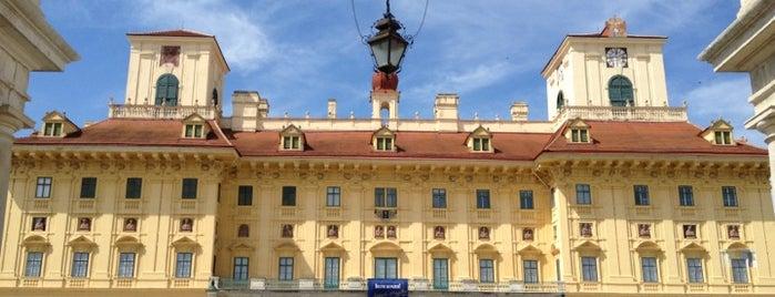 Schloss Esterházy is one of Lugares favoritos de Helena.