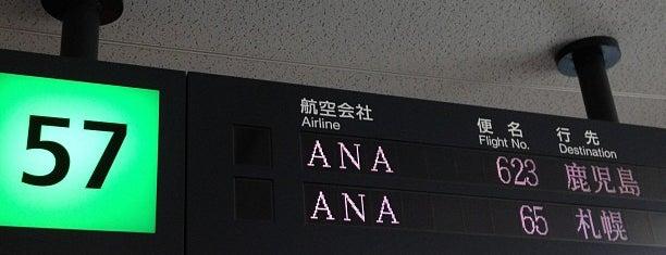 Gate 57 is one of 羽田空港 第2ターミナル 搭乗口 HND terminal2 gate.