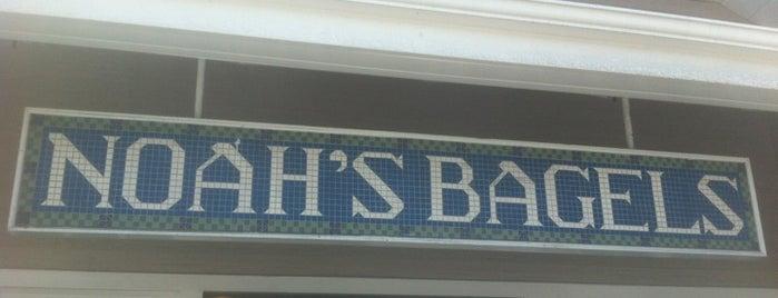 Noah's Bagels is one of สถานที่ที่ Alberto J S ถูกใจ.