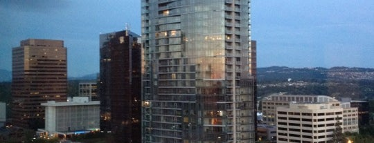 The Westin Bellevue is one of Hotels.