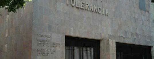 Museo Memoria y Tolerancia is one of Entre.