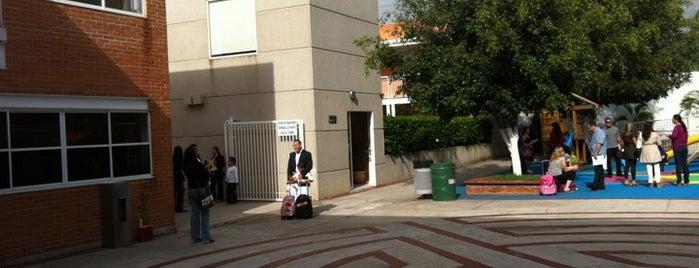 Instituto Tepeyac is one of สถานที่ที่ El Gos ถูกใจ.