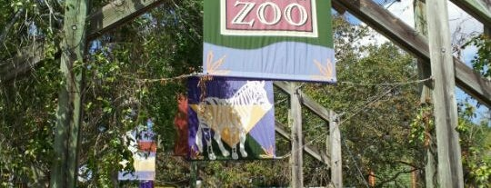 Tampa's Lowry Park Zoo is one of florida.