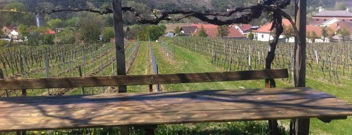 Weingut Frei is one of Top Weinlokations Österreich.