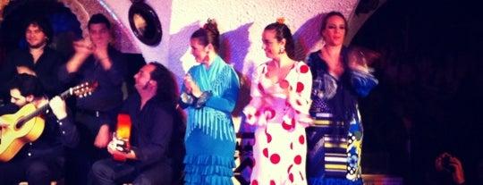 Flamenco Show Club is one of Où voir un spectacle de flamenco à Barcelone ?.