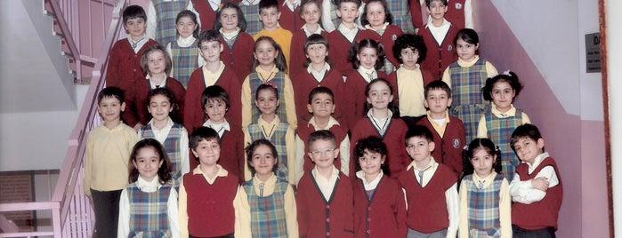Ahmet Hamdi Tanpınar İlköğretim Okulu is one of Alyans.