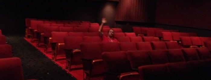 Massena Movieplex is one of Eddie's Liked Places.