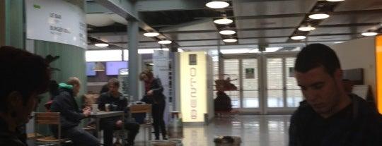 Ralph Lauren is one of Geneva (GVA) airport venues.