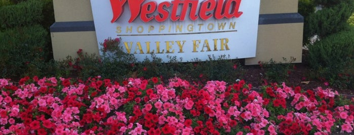 Westfield Valley Fair is one of favs around Bay Area.