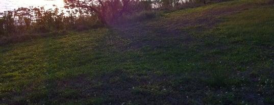 Walsingham Park is one of Posti che sono piaciuti a Clark.