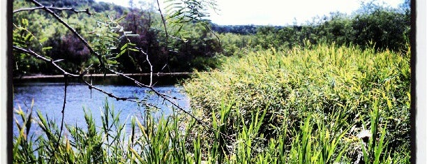 Cedar Ridge Preserve is one of Dallas-Fort Worth.