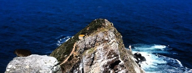 Cape Point Nature Reserve is one of South Africa.