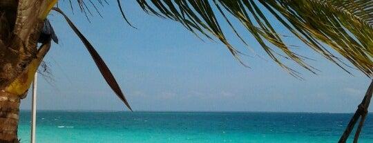 Nungwi Beach is one of Tanzanya Zanzibar Gezilecek Yerler.