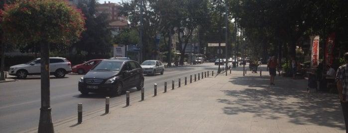 """Bağdat Caddesi is one of """"Zirve""""de Gece Hayatı."""