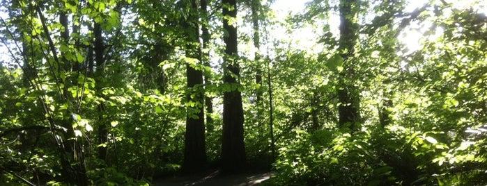 Noble Woods Park is one of Orte, die Jennifer gefallen.