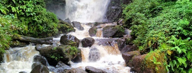 Torc Waterfall is one of Killarney.