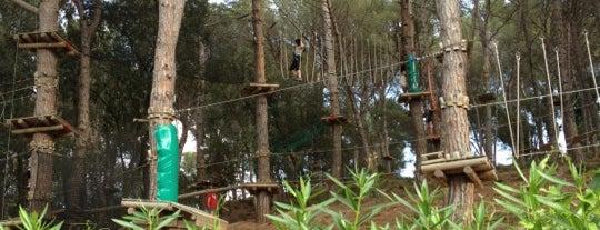 Gnomo park is one of Orte, die Josep gefallen.