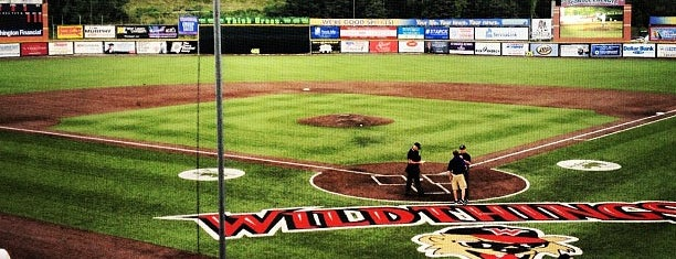 Wild Things Park is one of Independent League Stadiums.