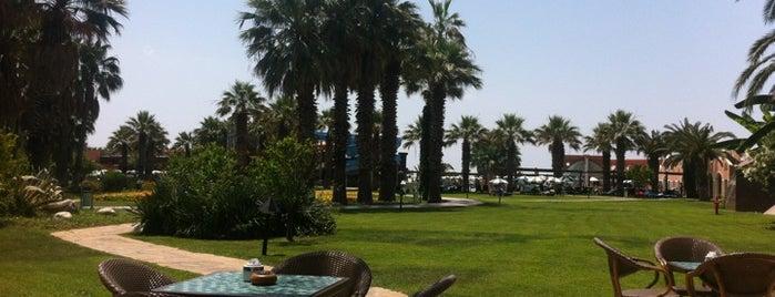 Club MEGA Saray is one of Antalya.