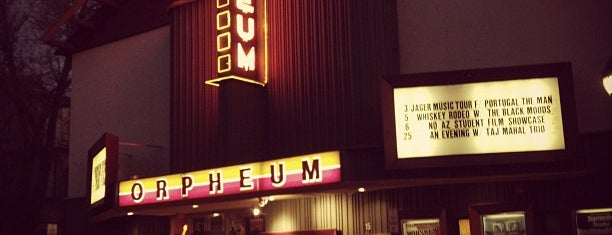 Orpheum Theatre is one of Locais curtidos por Anthony.